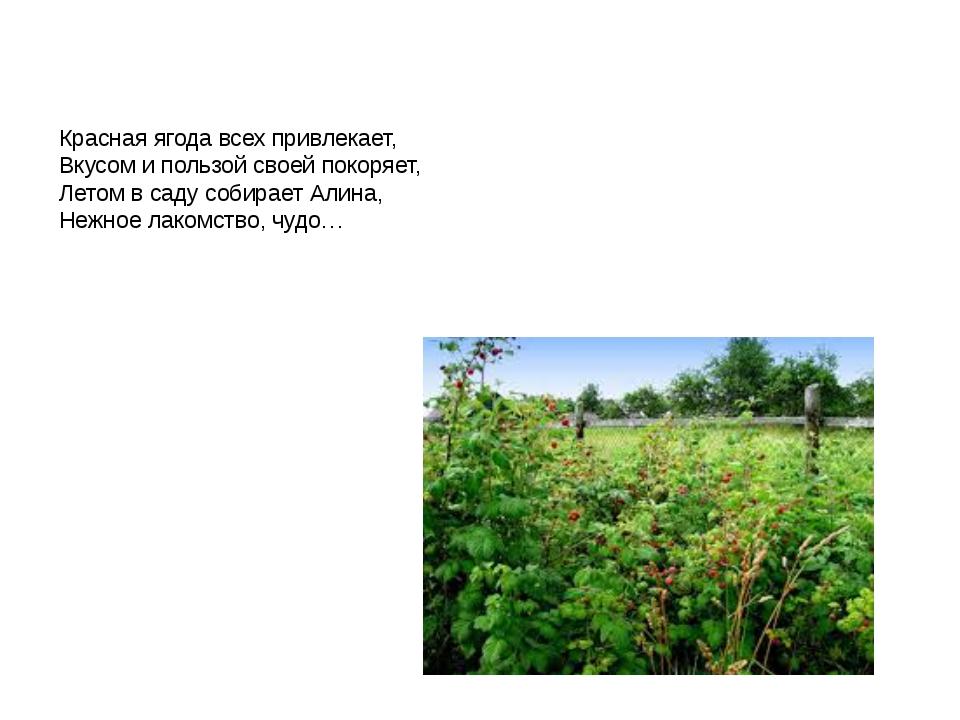 Красная ягода всех привлекает, Вкусом и пользой своей покоряет, Летом в саду...