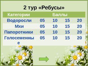 Папоротники 5 баллов Что растет без цвету папоротник FokinaLida.75@mail.ru