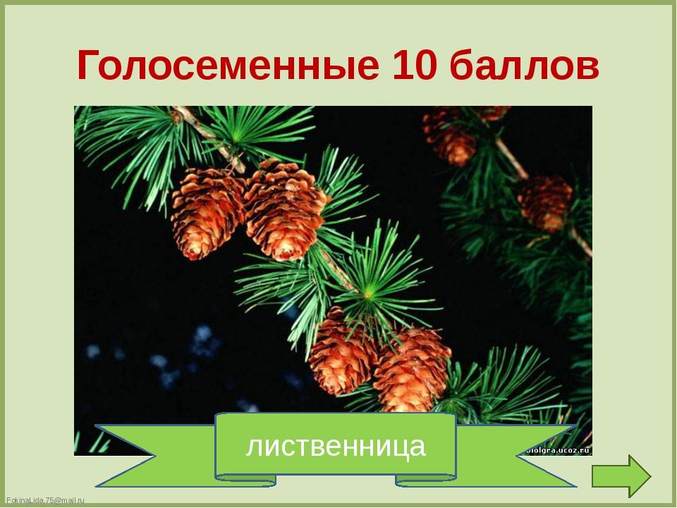 Игра со зрителями FokinaLida.75@mail.ru FokinaLida.75@mail.ru