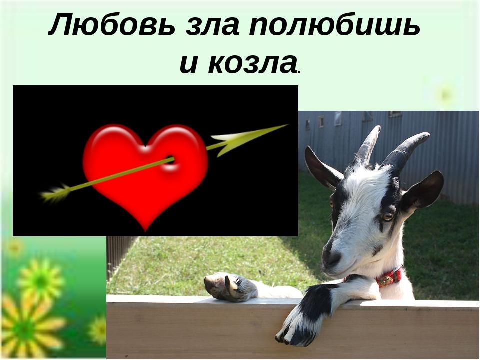 Картинки любовь зла полюбишь