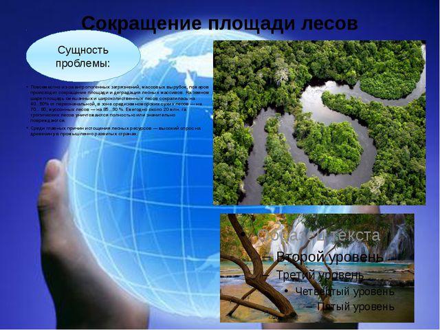 Сокращение площади лесов Повсеместно из-за антропогенных загрязнений, массовы...