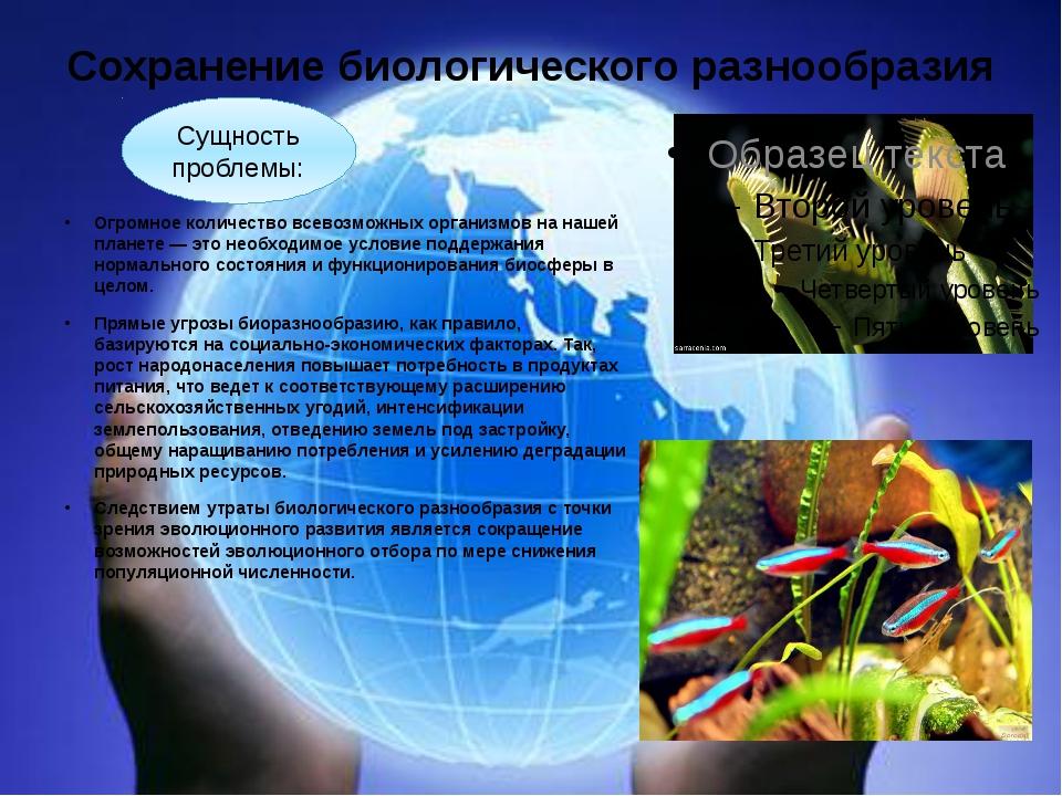 Сохранение биологического разнообразия Огромное количество всевозможных орган...