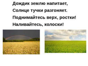 Дождик землю напитает, Солнце тучки разгоняет. Поднимайтесь верх, ростки! Нал