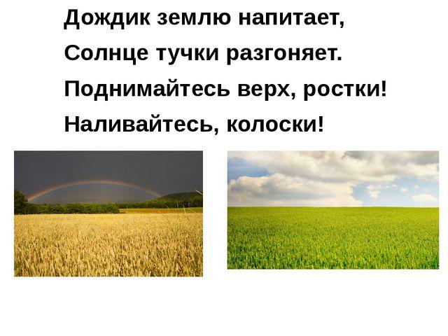 Дождик землю напитает, Солнце тучки разгоняет. Поднимайтесь верх, ростки! Нал...