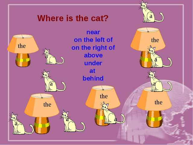 Where is the cat? near on the left of on the right of above under at behind t...