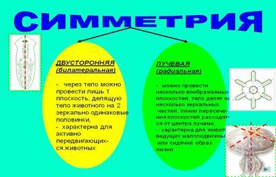 hello_html_m7c67007d.jpg