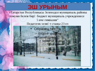 ЭШ УРЫНЫМ «Татарстан Республикасы Зеленодол муниципаль районы гомуми белем би