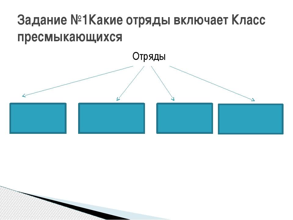 Отряды Задание №1Какие отряды включает Класс пресмыкающихся