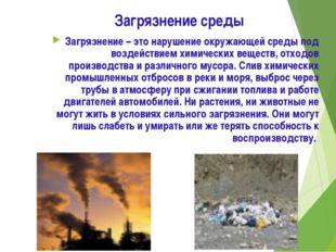 Загрязнение среды Загрязнение – это нарушение окружающей среды под воздействи