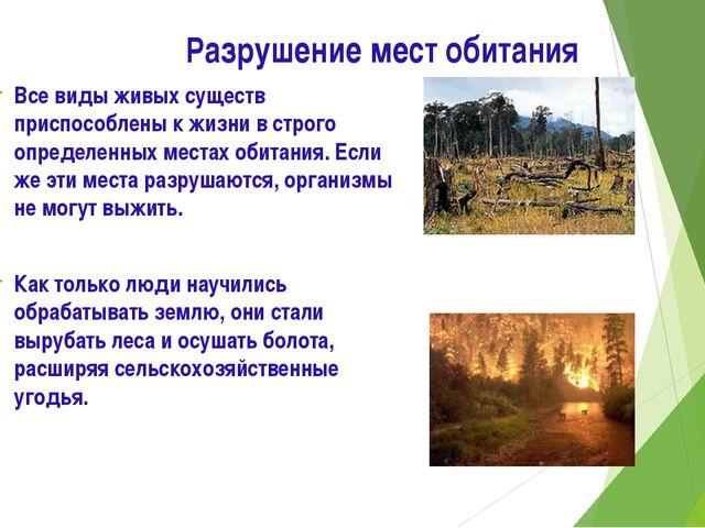 Разрушение мест обитания Все виды живых существ приспособлены к жизни в строг...