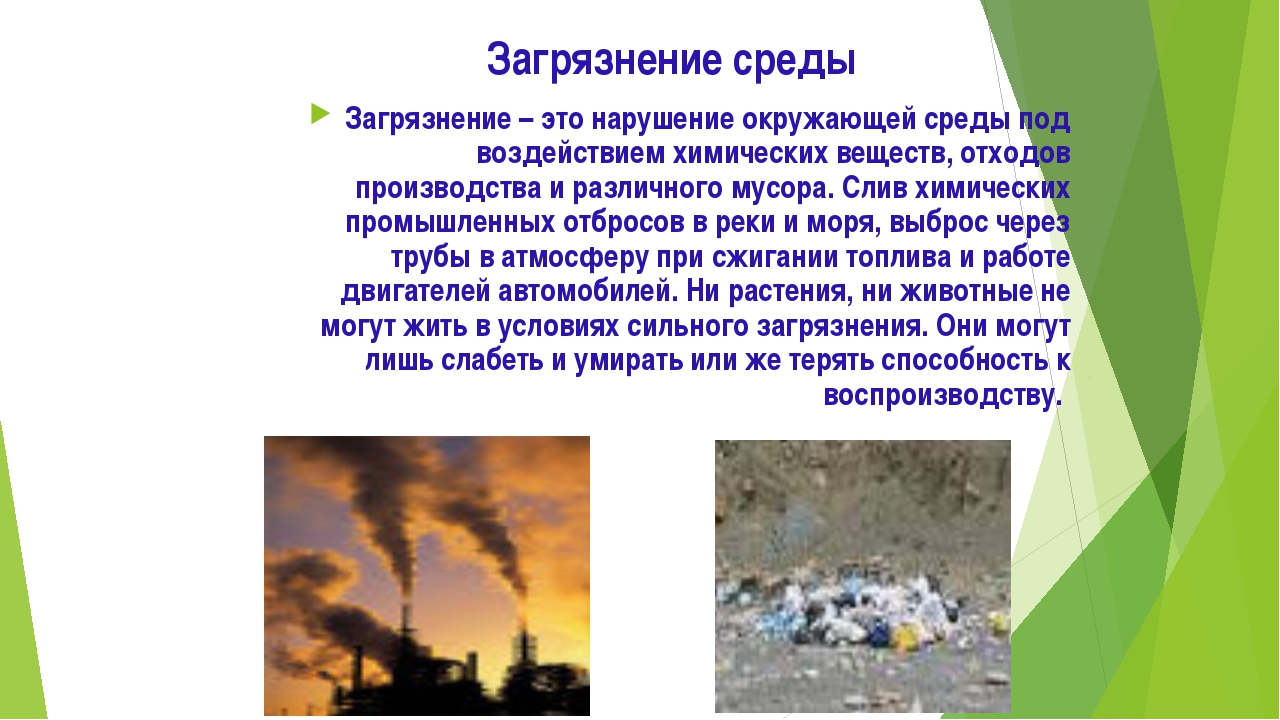 Загрязнение среды Загрязнение – это нарушение окружающей среды под воздействи...