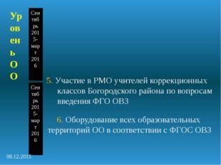 5. Участие в РМО учителей коррекционных классов Богородского района по вопрос