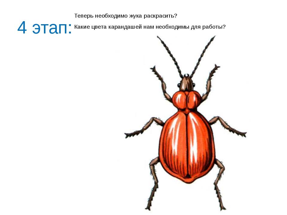 4 этап: Теперь необходимо жука раскрасить? Какие цвета карандашей нам необход...
