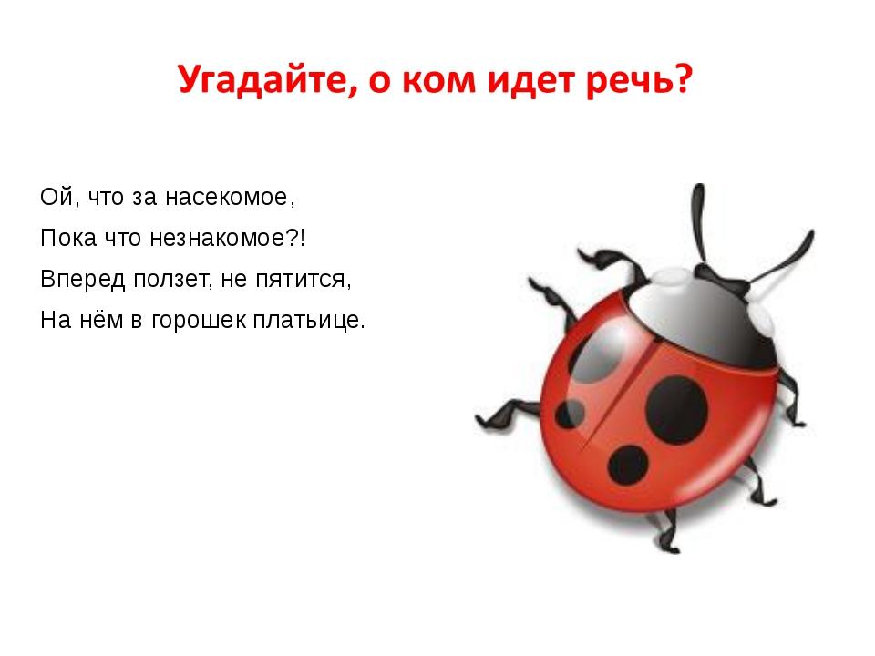 Ой, что за насекомое, Пока что незнакомое?! Вперед ползет, не пятится, На нё...