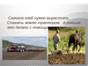 Сначала хлеб нужно вырастить. Спахать землю трактором. А раньше это делали с