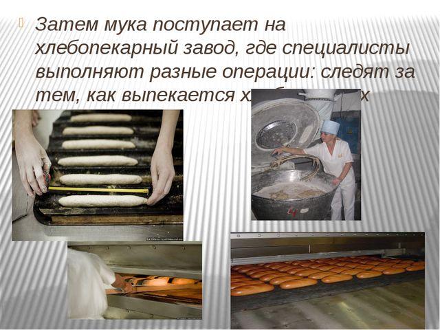 Затем мука поступает на хлебопекарный завод, где специалисты выполняют разны...