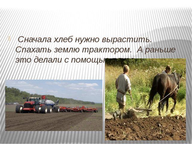 Сначала хлеб нужно вырастить. Спахать землю трактором. А раньше это делали с...
