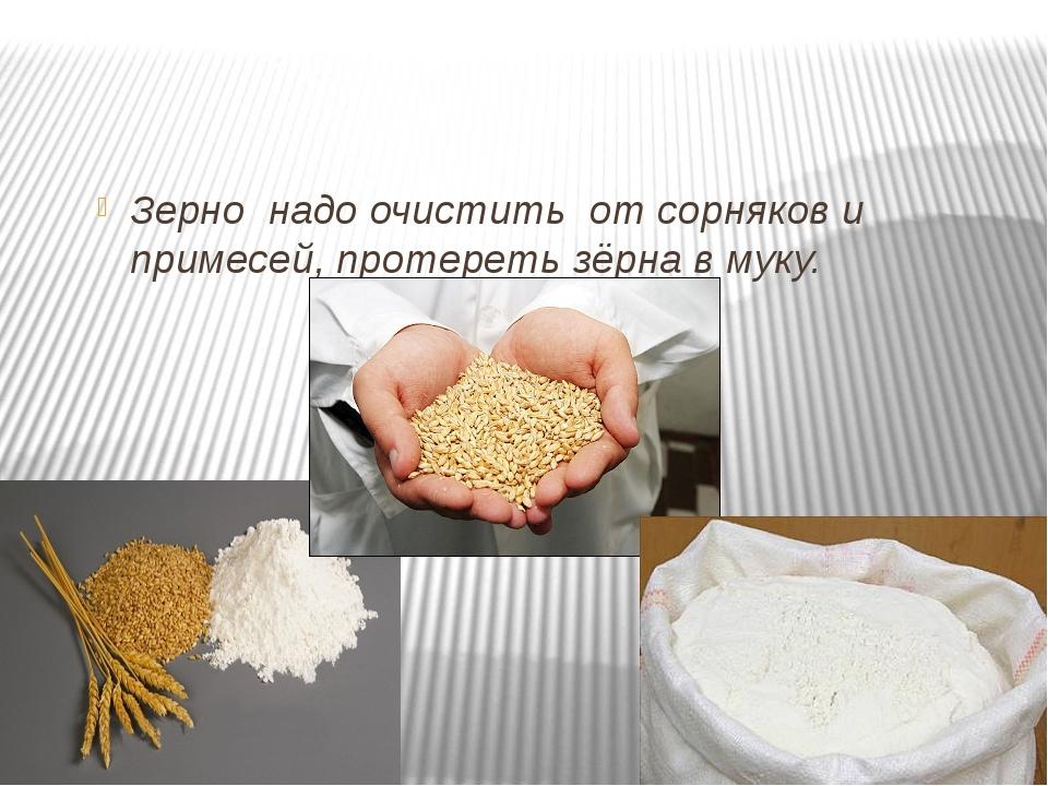 Зерно надо очистить от сорняков и примесей, протереть зёрна в муку.