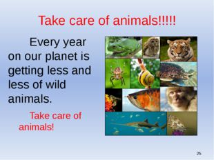 Take care of animals!!!!! 		Every year on our planet is getting less and les
