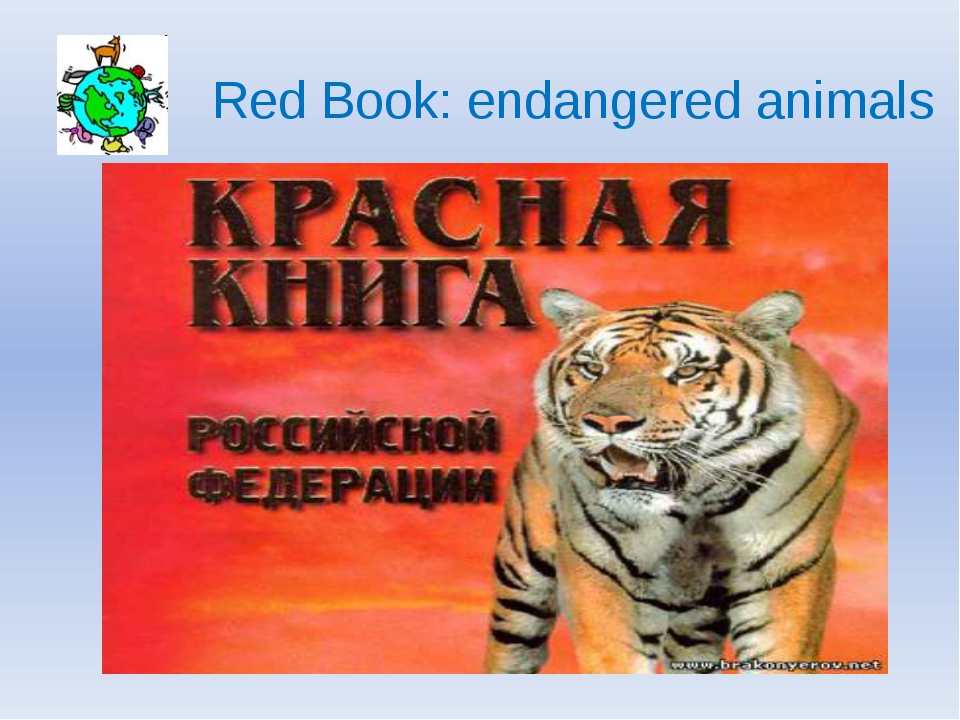 Red Book: endangered animals