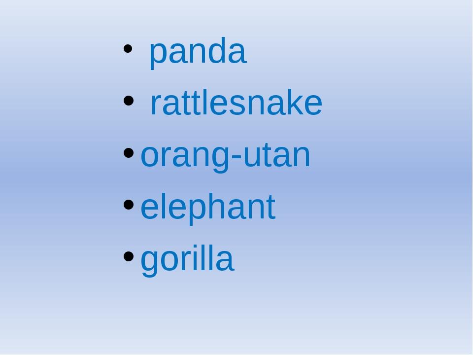 panda rattlesnake orang-utan elephant gorilla
