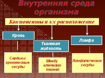 http://festival.1september.ru/articles/568861/img1.jpg
