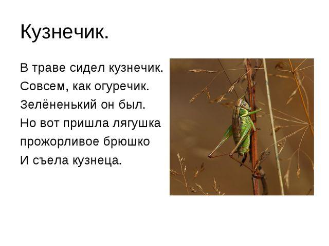 Кузнечик. В траве сидел кузнечик. Совсем, как огуречик. Зелёненький он был. Н...