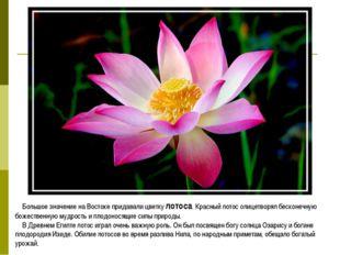 Большое значение на Востоке придавали цветку лотоса. Красный лотос олицетворя