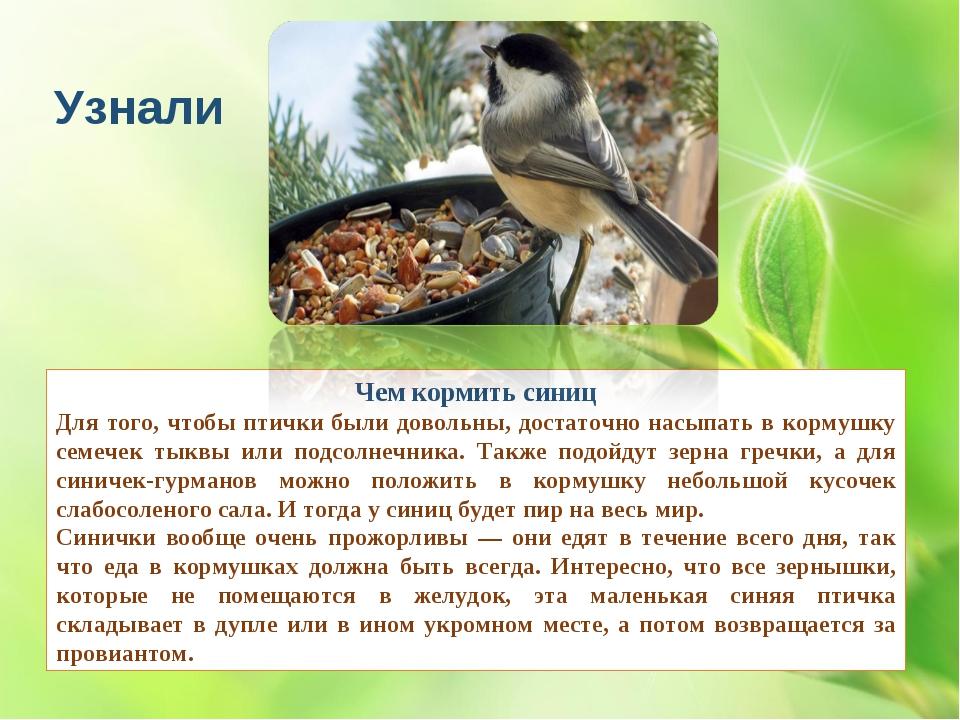 Чем кормить синиц Для того, чтобы птички были довольны, достаточно насыпать в...
