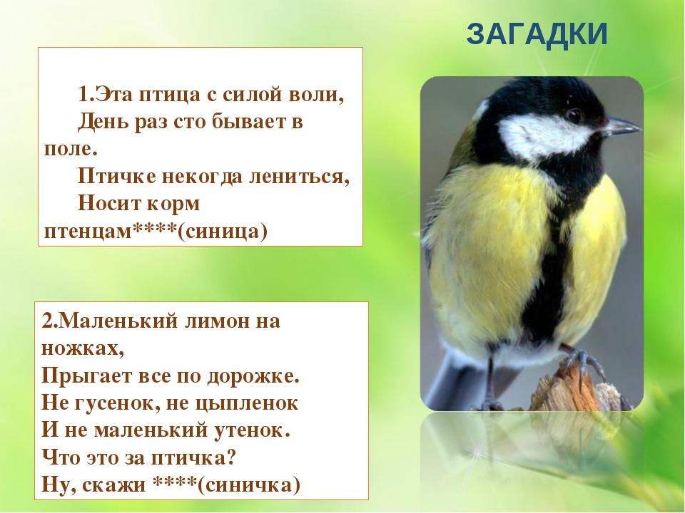 1.Эта птица с силой воли, День раз сто бывает в поле. Птичке некогда ленитьс...