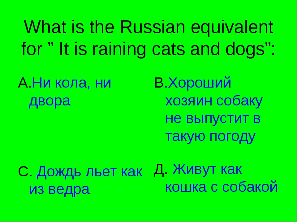 "What is the Russian equivalent for "" It is raining cats and dogs"": A.Ни кола,..."
