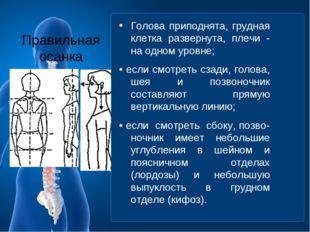 Правильная осанка Голова приподнята, грудная клетка развернута, плечи - на од