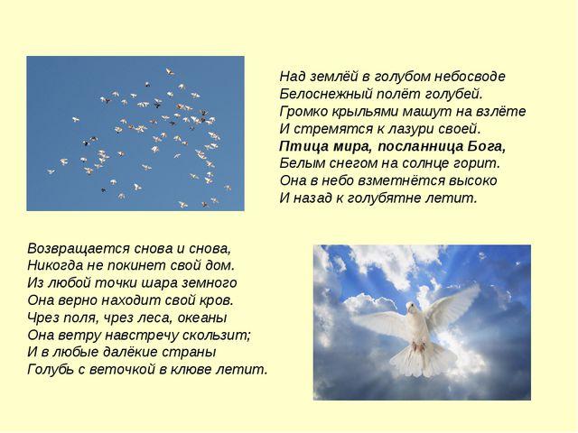 Над землёй в голубом небосводе Белоснежный полёт голубей. Громко крыльями маш...