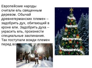 Европейские народы считали ель священным деревом. Обычай древнегерманских пле