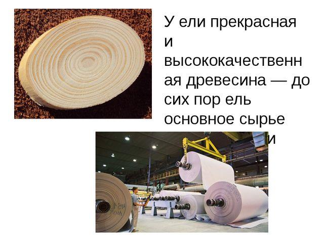 У ели прекрасная и высококачественная древесина — до сих пор ель основное сыр...