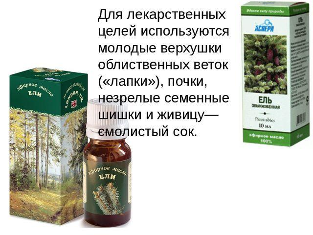 Для лекарственных целей используются молодые верхушки облиственных веток («ла...