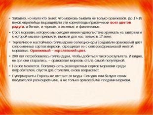 Забавно, но мало кто знает, что морковь бывала не только оранжевой. До 17-18