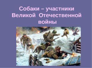 Собаки – участники Великой Отечественной войны