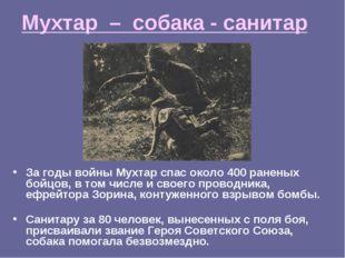 Мухтар – собака - санитар За годы войны Мухтар спас около 400 раненых бойцов,