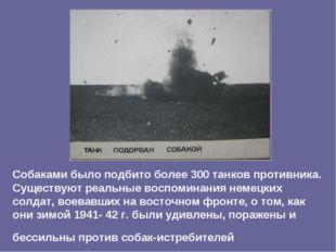 Собаками было подбито более 300 танков противника. Существуют реальные воспом