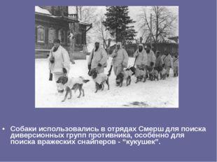 Собаки использовались в отрядах Смерш для поиска диверсионных групп противник
