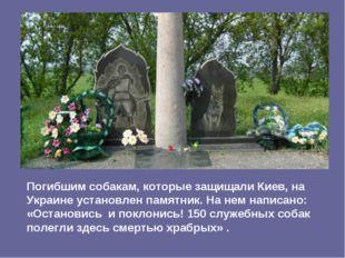Погибшим собакам, которые защищали Киев, на Украине установлен памятник. На н