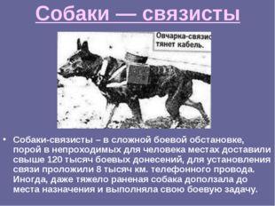 Собаки — связисты Собаки-связисты – в сложной боевой обстановке, порой в непр