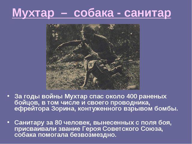 Мухтар – собака - санитар За годы войны Мухтар спас около 400 раненых бойцов,...