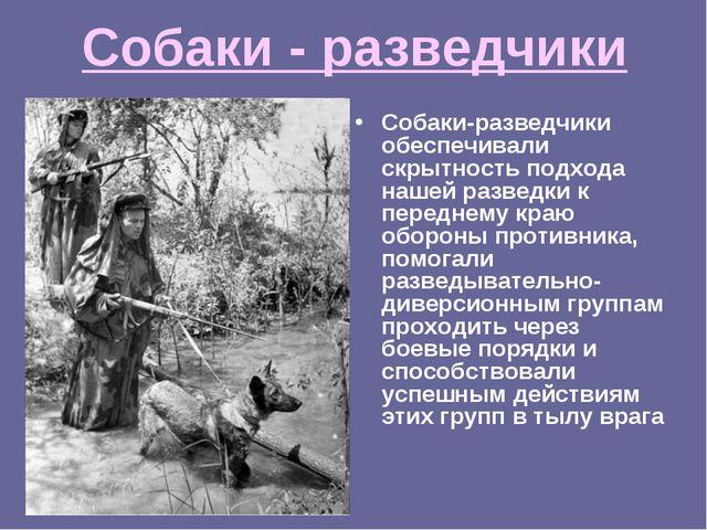 Собаки - разведчики Собаки-разведчики обеспечивали скрытность подхода нашей р...