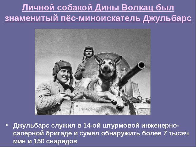 Личной собакой Дины Волкац был знаменитый пёс-миноискатель Джульбарс Джульбар...