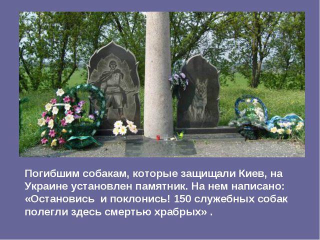 Погибшим собакам, которые защищали Киев, на Украине установлен памятник. На н...