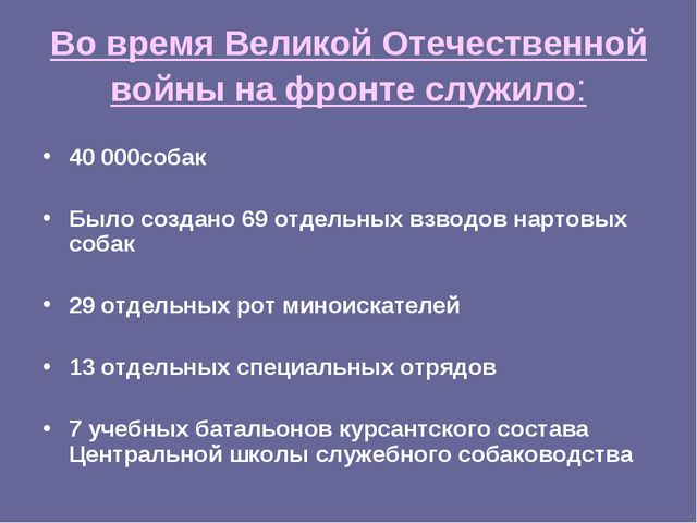 Во время Великой Отечественной войны на фронте служило: 40 000собак Было созд...