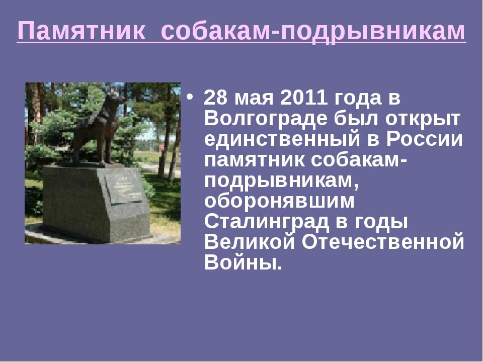 Памятник собакам-подрывникам 28 мая 2011 года в Волгограде был открыт единств...