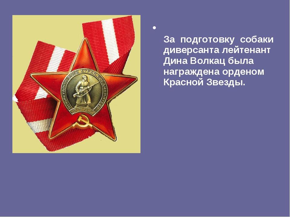 За подготовку собаки диверсанта лейтенант Дина Волкац была награждена ордено...
